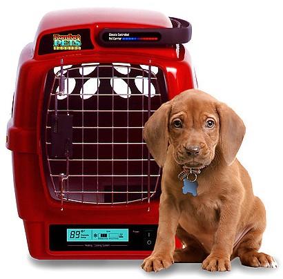 Требования ЕС для перевозки домашних животных